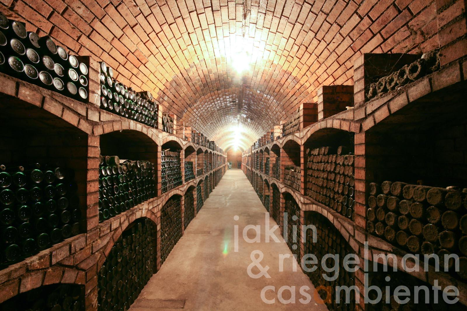 The historic wine cellar with old vintages