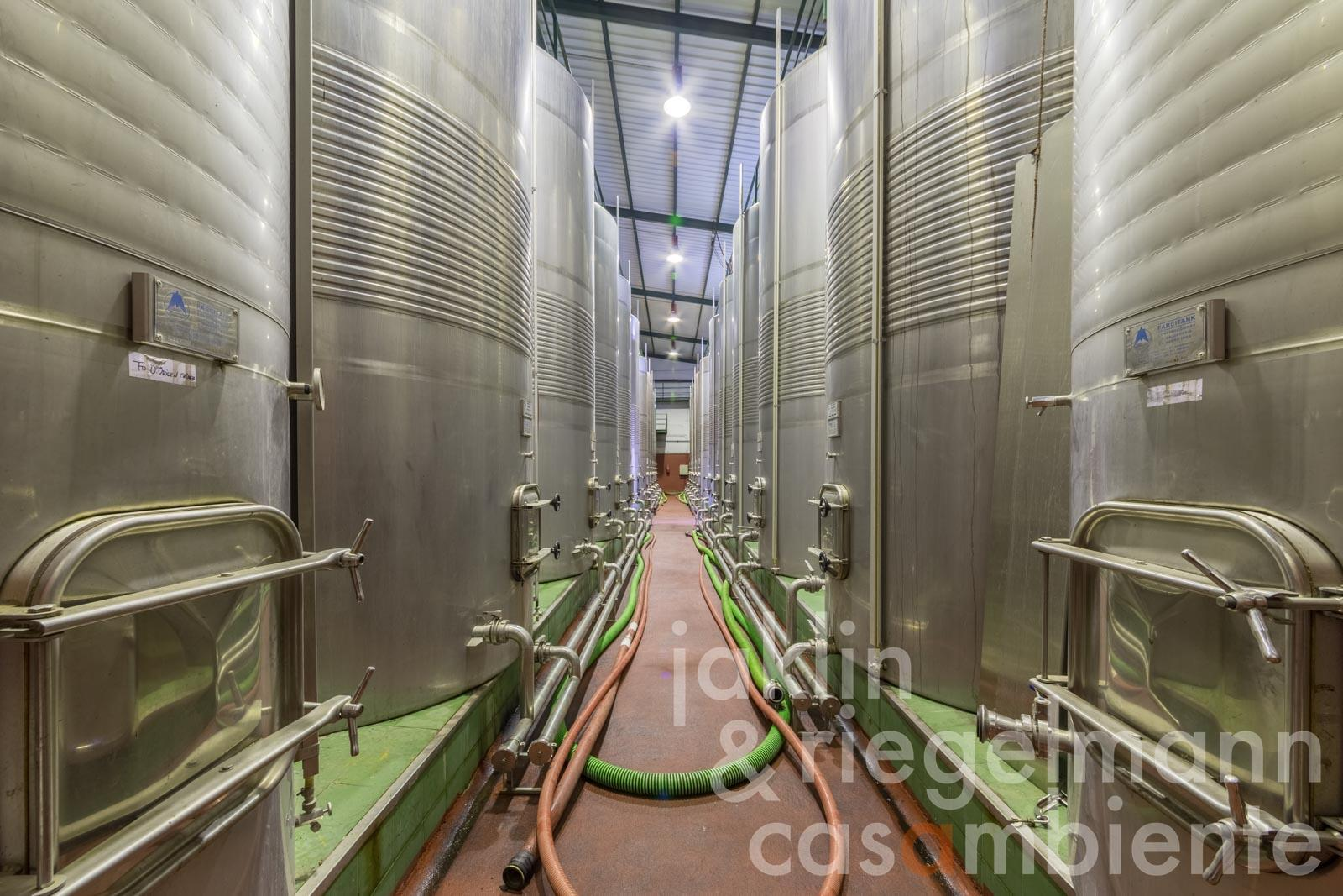 The Spanish winery for sale DO Vinos de Madrid 30 km from the centre of Madrid