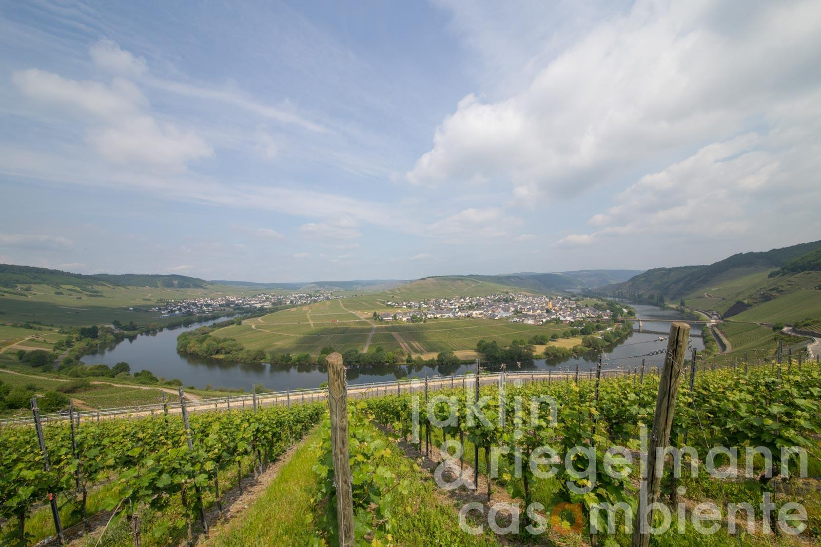The German winery for sale on the Middle Moselle with holiday apartments in a very good business situation