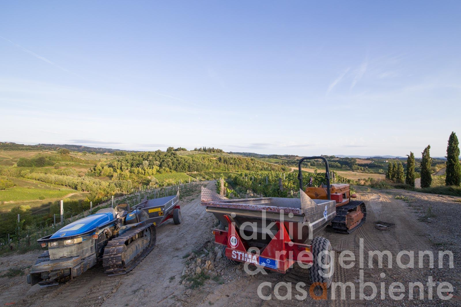 Organic agricultural business for sale in Tuscany with agriturismo, restaurant, vineyards and olive groves
