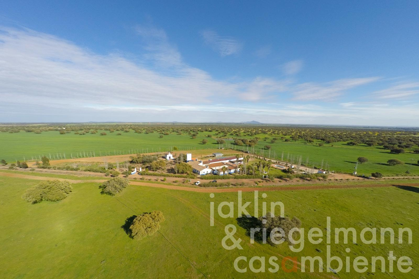 The agricultural estate for sale in the Extremadura in Spain with 570 hectares of land for the breeding of Iberian pigs and cattle