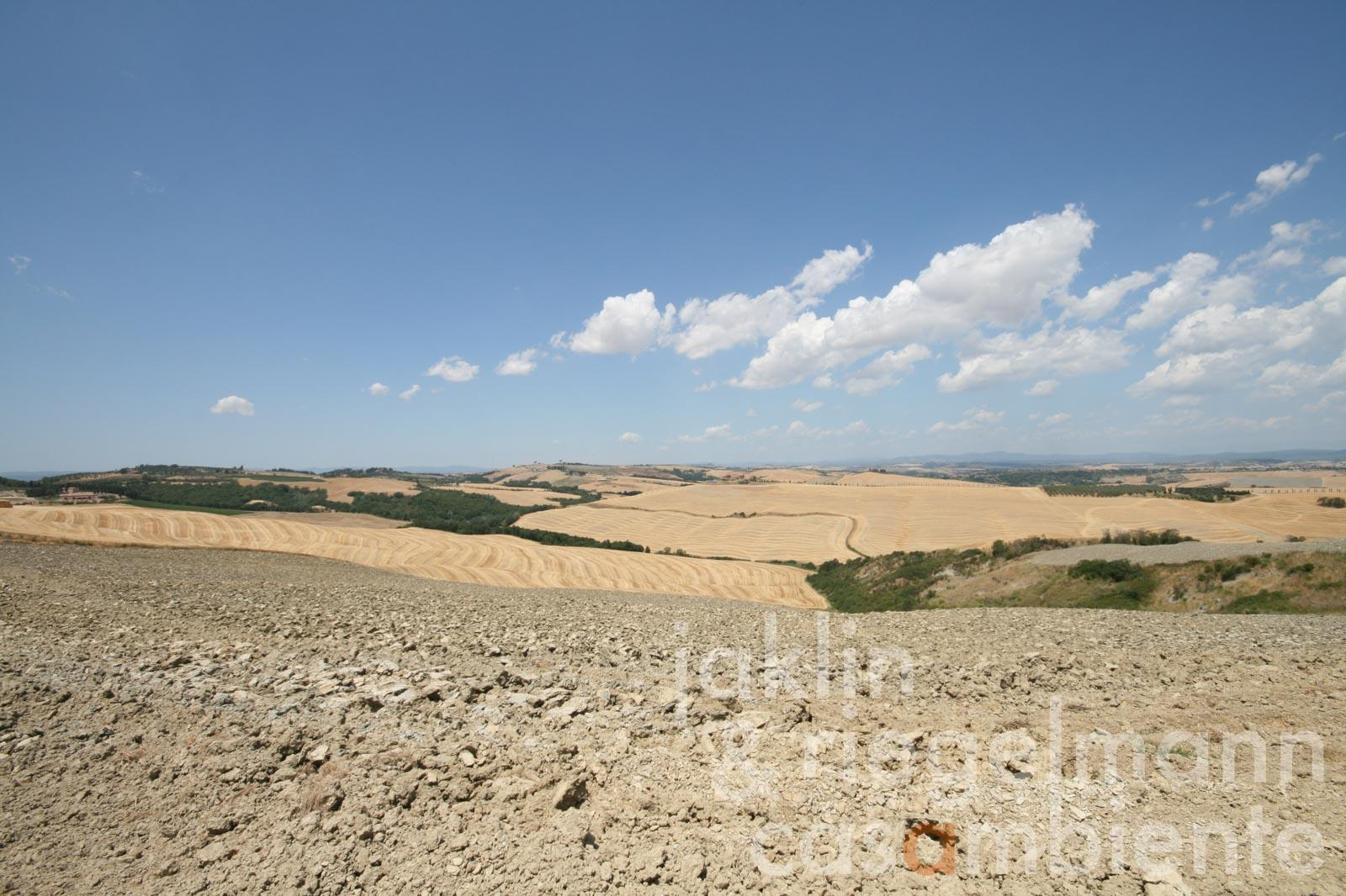 Tuscany, 30 km from Siena, estate with 300 ha of land and 4 farmhouses