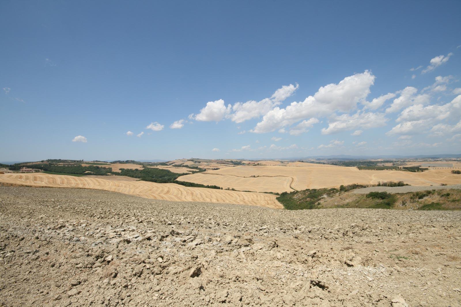 30 km da Siena, tenuta con 300 ettari di terreno e 4 aziende agricole