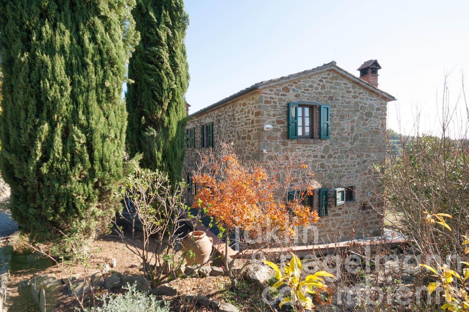 Restored natural stone house with olive grove in a quiet panoramic position of Tuscany