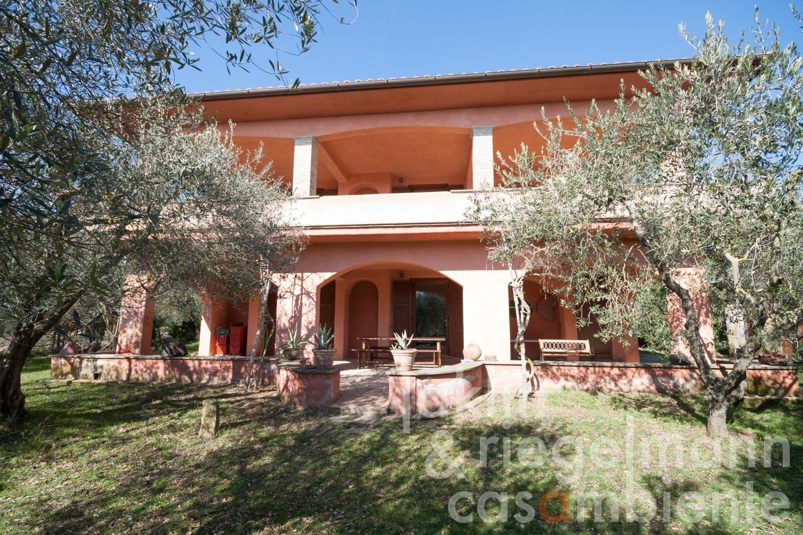 Quietly situated country house with olive grove and view of Lake Bolsena