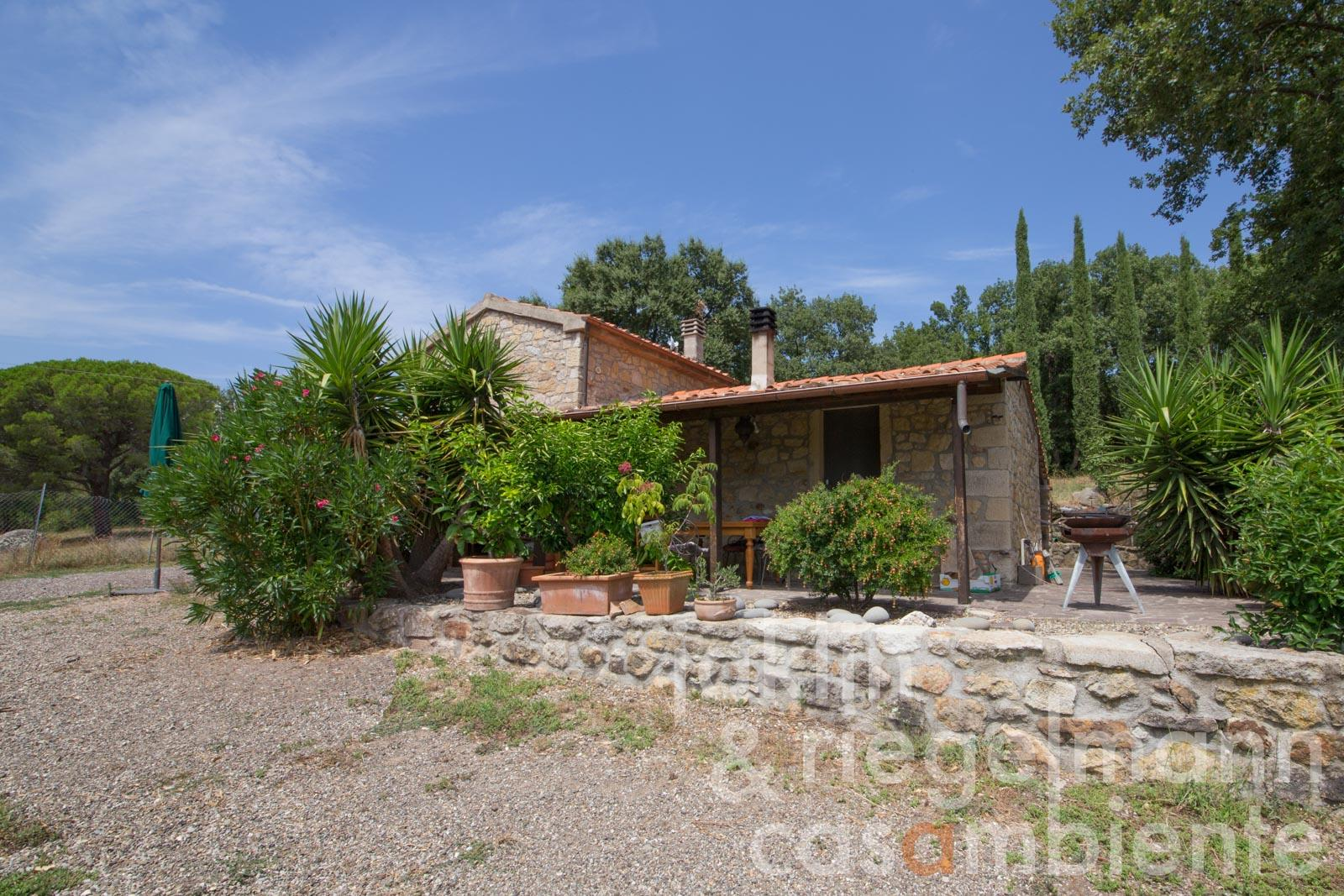 Property in wonderful location of the Maremma with building volume, olive groves and pasture land
