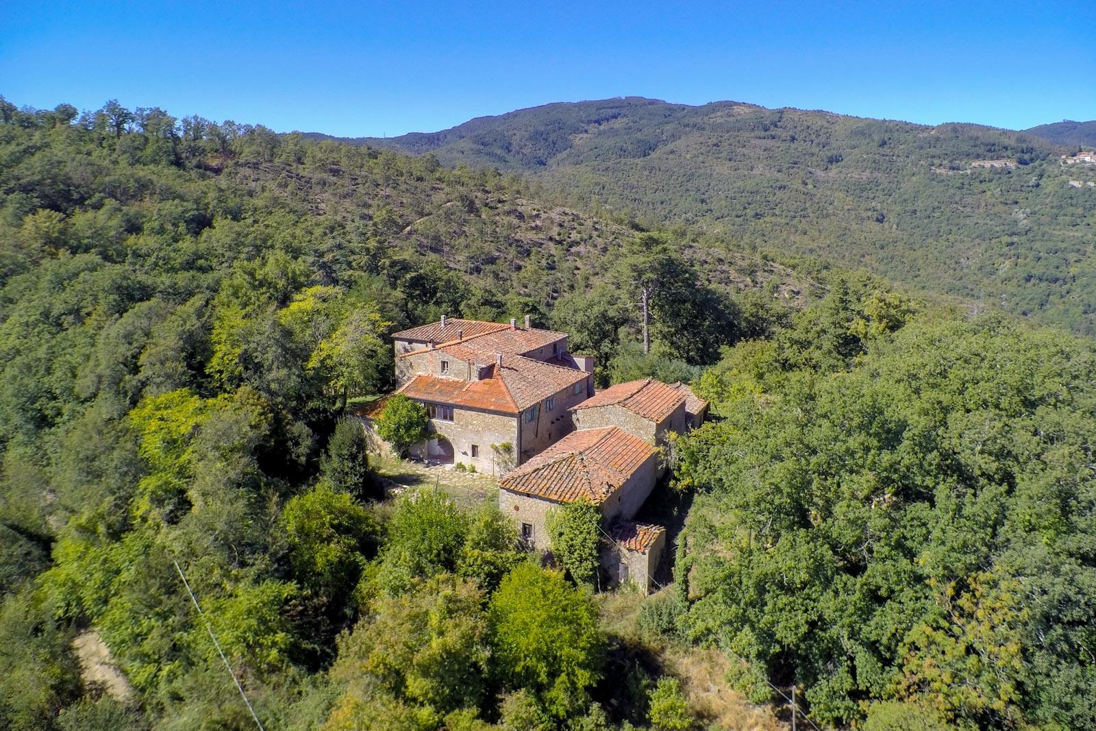 Casa Colonica mit Nebengebäuden und 12 ha Wald in einem Waldgebiet nahe Arezzo in der Toskana