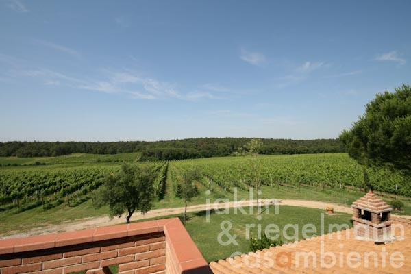 Panoramic views from the first floor across the vineyards
