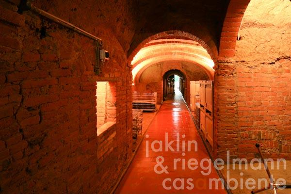 The historic wine cellar