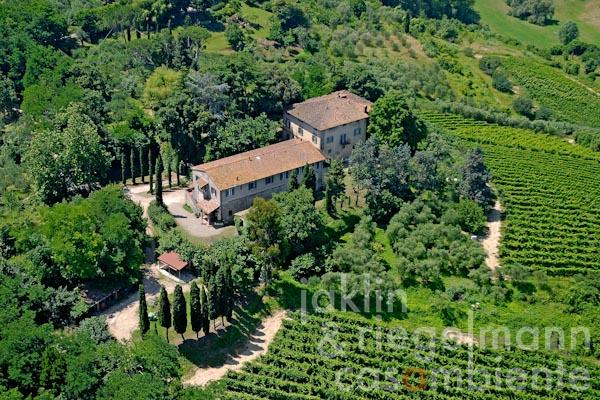 The winery DOC Colli Pisani with villa for sale in Tuscany