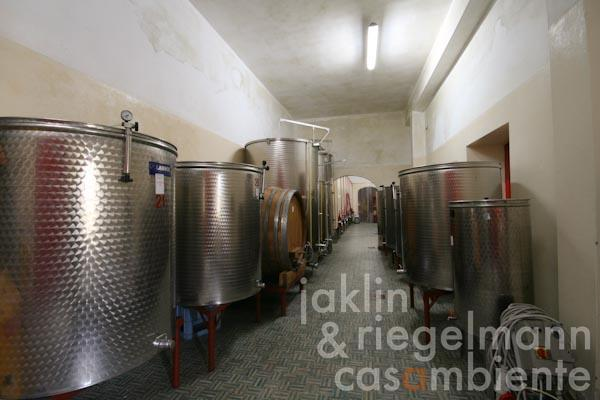 The wine cellar in the Casa Colonica