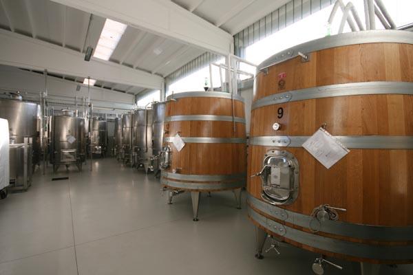 La cantina per la produzione vinicola