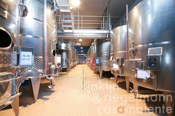 The state-of-the-art subterranean wine cellar