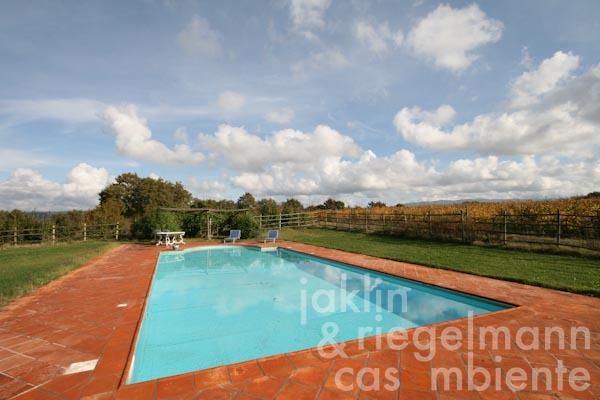 The swimming pool between the houses and the adjacent vineyards