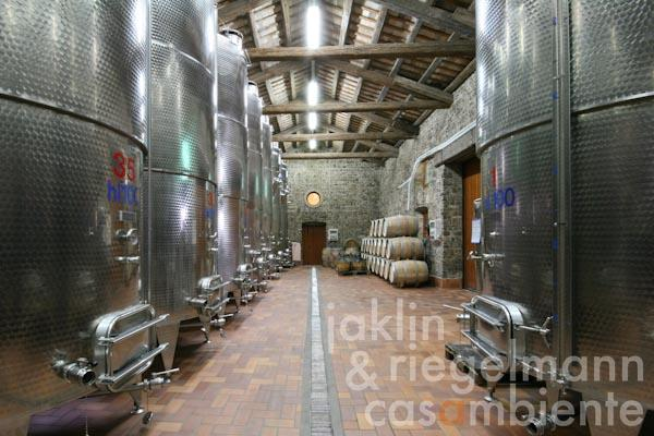 The winery Friuli Aquileia DOC for sale with 24 ha of vineyards and well established brand