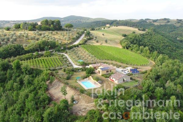 The small winery and country estate for sale with IGT Umbria Rosso vineyards and organic olive groves close to Todi
