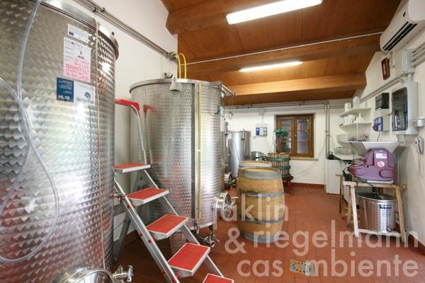 The wine production in the annexe building