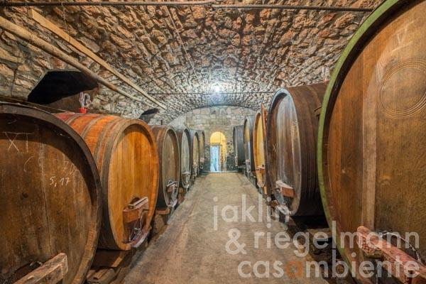 Traditional winery in the Palatinate on the German Wine Route with very good direct sales