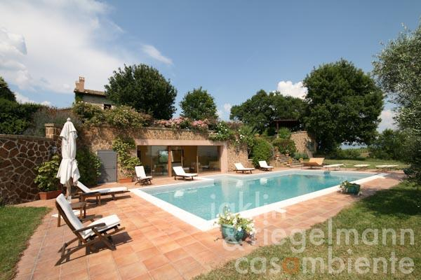 The beautiful pool, the pool-lounge and the country house in the background