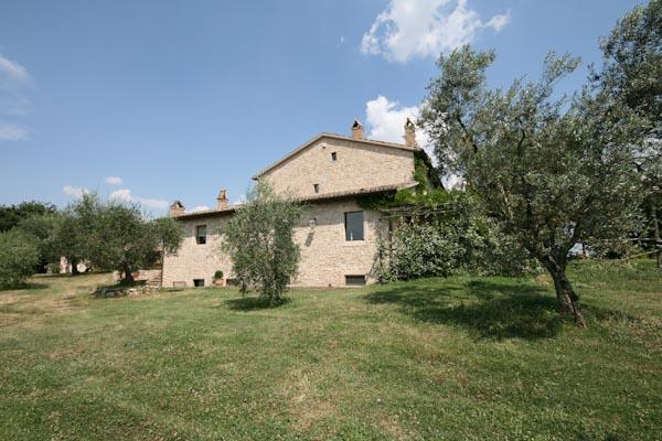 Der Blick auf das Landhaus vom Olivenhain