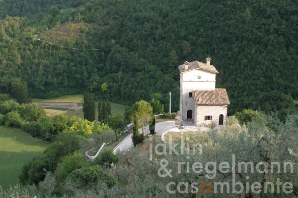 The tower with surrounding terraces from the olive grove above the property