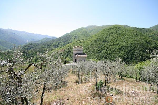 Panoramic view of the watchtower from the olive grove above the property