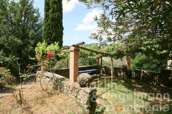 The overgrown pergola on south with panoramic views towards Volterra