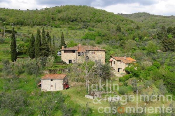 The country houses for sale with pool and olive grove close to Loro Ciuffenna in Tuscany