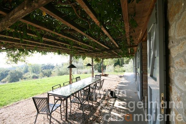 The overgrown pergola in front of the living area