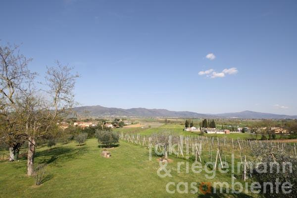 The panoramic view across the well-kept garden and the Val di Chiana valley