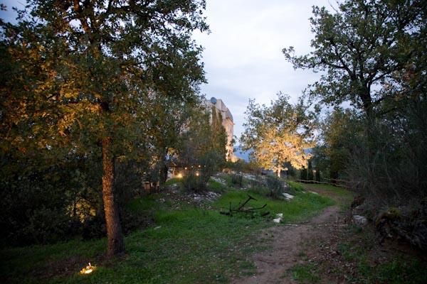 Der Garten mit einem schönen Baumbestand