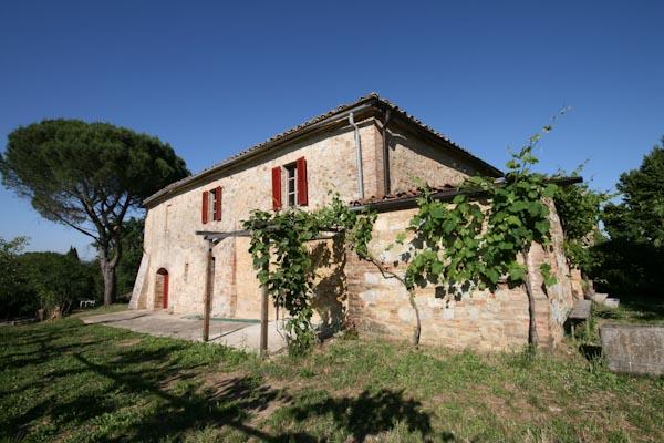 Das toskanische Landhaus zu verkaufen mit Weinberg in schöner Aussichtslage nahe Buonconvento
