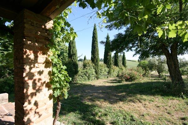 Der Blick von der Pergola über den privaten Garten nach Süden