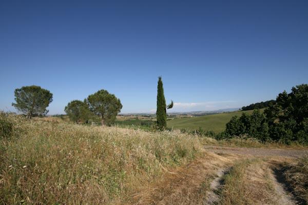 Der Blick über die toskanischen Hügel nahe Buonconvento