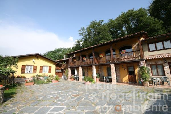 The country estate and Agriturismo for sale with typical country house, pool and hazelnut orchard in Piedmont