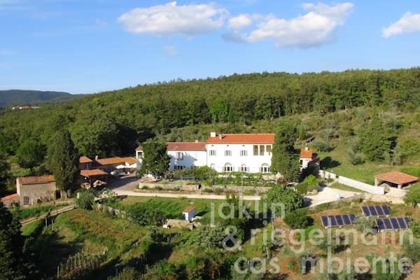 The organic country estate for sale with agritourism, wine and olive oil production