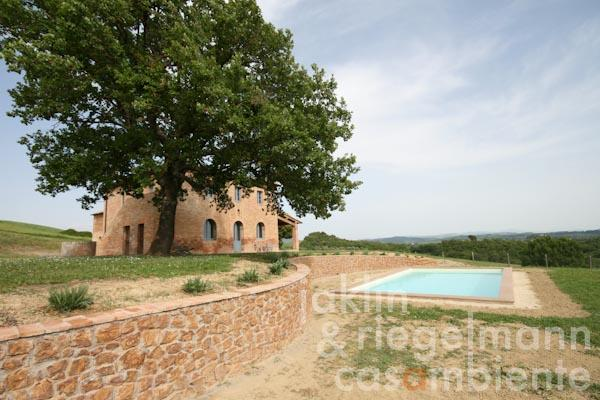 The restored farmhouse with the saltwater pool and the impressive oak tree