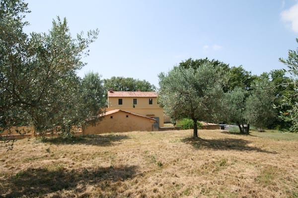 Blick vom Olivenhain nach Süden auf die Gebäude