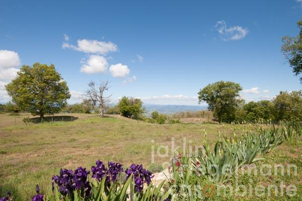 Der Weitblick ins Orcia-Tal