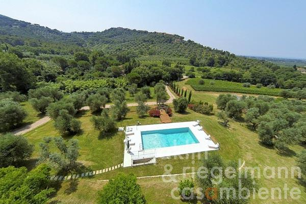 Tuscan Country Estate with Sea View, Pool and Olive Grove close to Castagneto Carducci