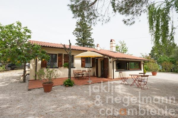 Restored small country house in the middle of an olive grove 30 km from Pisa