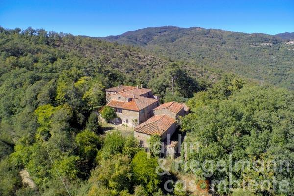 Casa Colonica with outbuildings and 12 ha forest in a woodland area near Arezzo in Tuscany