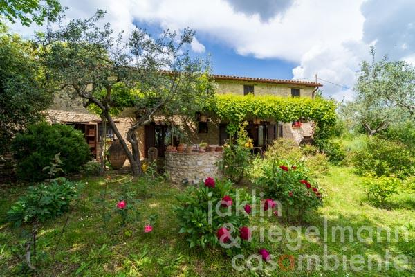 Charming authentic stone house for sale with annexe to restore situated in a lovely position close to Montefalco