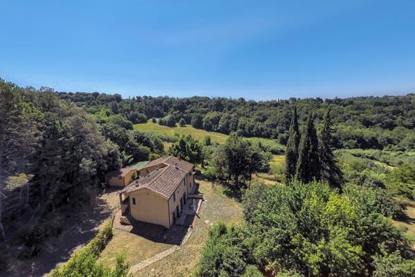 Landhaus inmitten eines alten Olivenhains bei Guardistallo