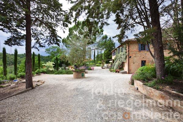 The former Tuscan farmhouse for sale close to the abbey Monte Oliveto Maggiore